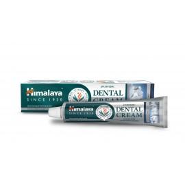 Ayurvédska zubná pasta so soľou 100g - Himalaya herbals
